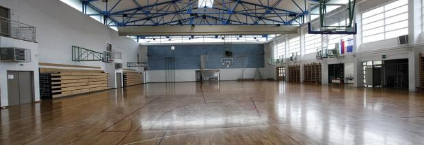 Sports hall of the elementary school Kašelj image